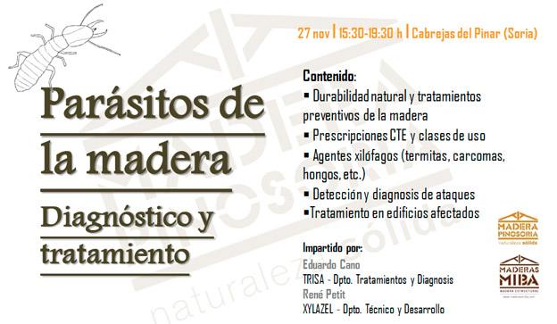 Jornada t cnica par sitos de la madera diagn stico y - Tratamiento de la madera ...