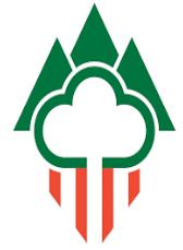 COSE_Consorci_Logo